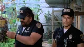 Супер полицейские Майами (комедия) 1985