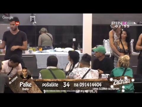 Zadruga TV Pink 24h - YouTube