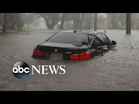Millions of cars and trucks were soaked in flood waters after the storm