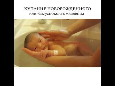 Ромашка аптечная (лекарственная) - лечебные свойства