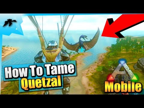 Ark Mobile| How To Tame A Quetzal Solo| IOS/Android Total Beginner's Guide