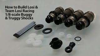 Load Video 2:  HorizonHobby.com Tutorial - How to Assemble & Bleed Losi and TLR 8IGHT & 8IGHT-T Shock