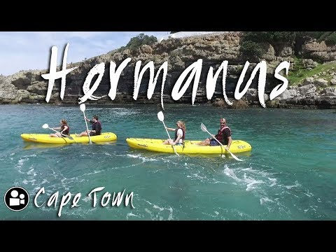 Epic Adventure in Hermanus | 5 Part Vlog Trailer | Things to do in Cape Town