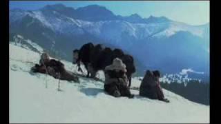 Kelin Movie trailer