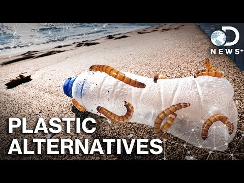What Would A World Without Plastic Look Like?