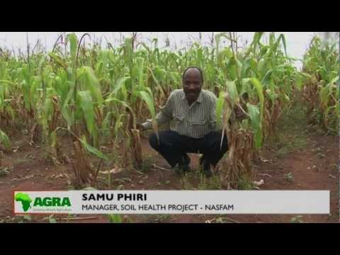 SOIL HEALTH PROJECT IN MALAWI