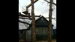 Дерево упало на крышу жилого дома(, 2015-04-22T14:07:15.000Z)