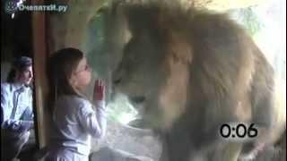 اطفال مع حيوانات مفترسه جائعه !
