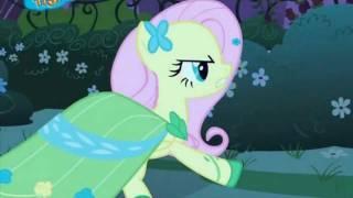 Pony Pokey | French Version