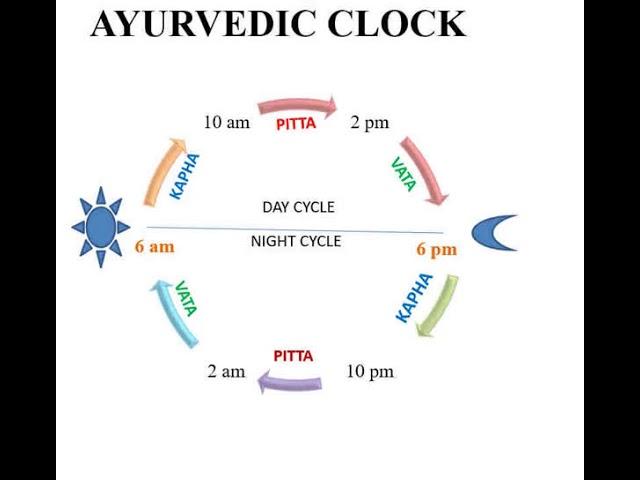 Episode 44 Daily Arogya  Ayurvedic Clock