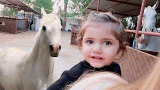 اول مرة بيبي تركب حصان (نهاية بدموع😢)
