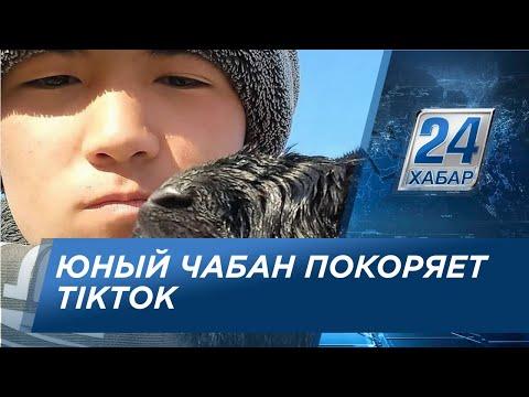 Юный чабан из Жамбылской области покоряет TikTok