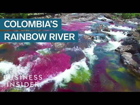 This rainbow river in Colombia has been labelled the most beautiful in the world