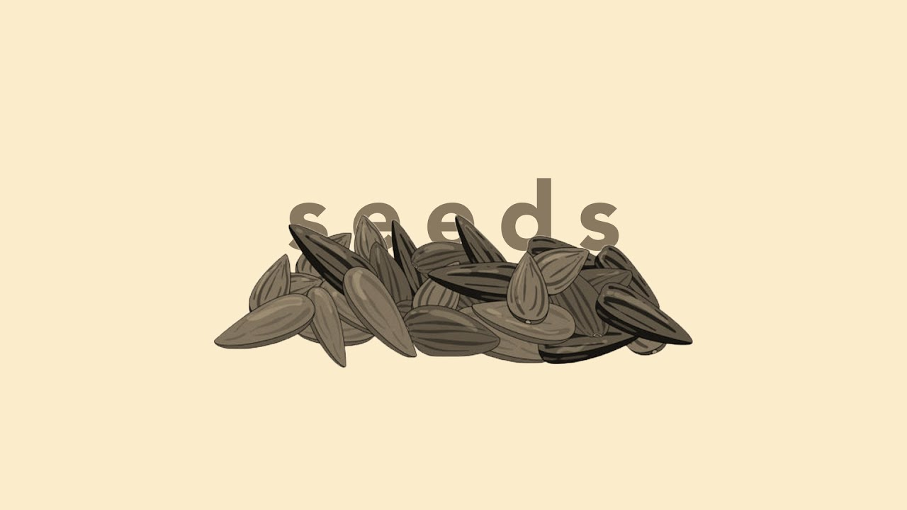 CT Pasadena - Seeds - Part 3