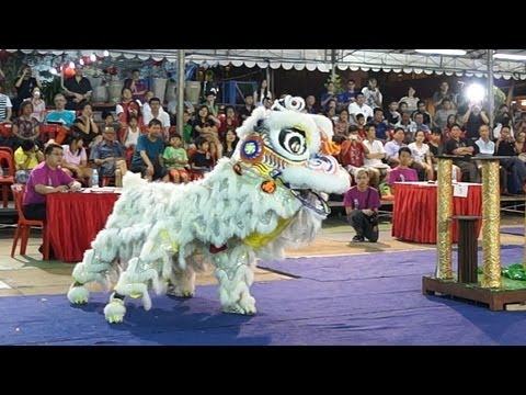 新加坡南仙龍獅體育會 2013 International Lion Dance Competition 2013