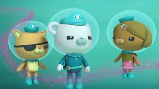 Octonauts and the Manta Rays - Full Episode