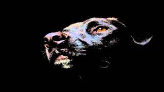 Tomas Jirku - Star Control [dub]