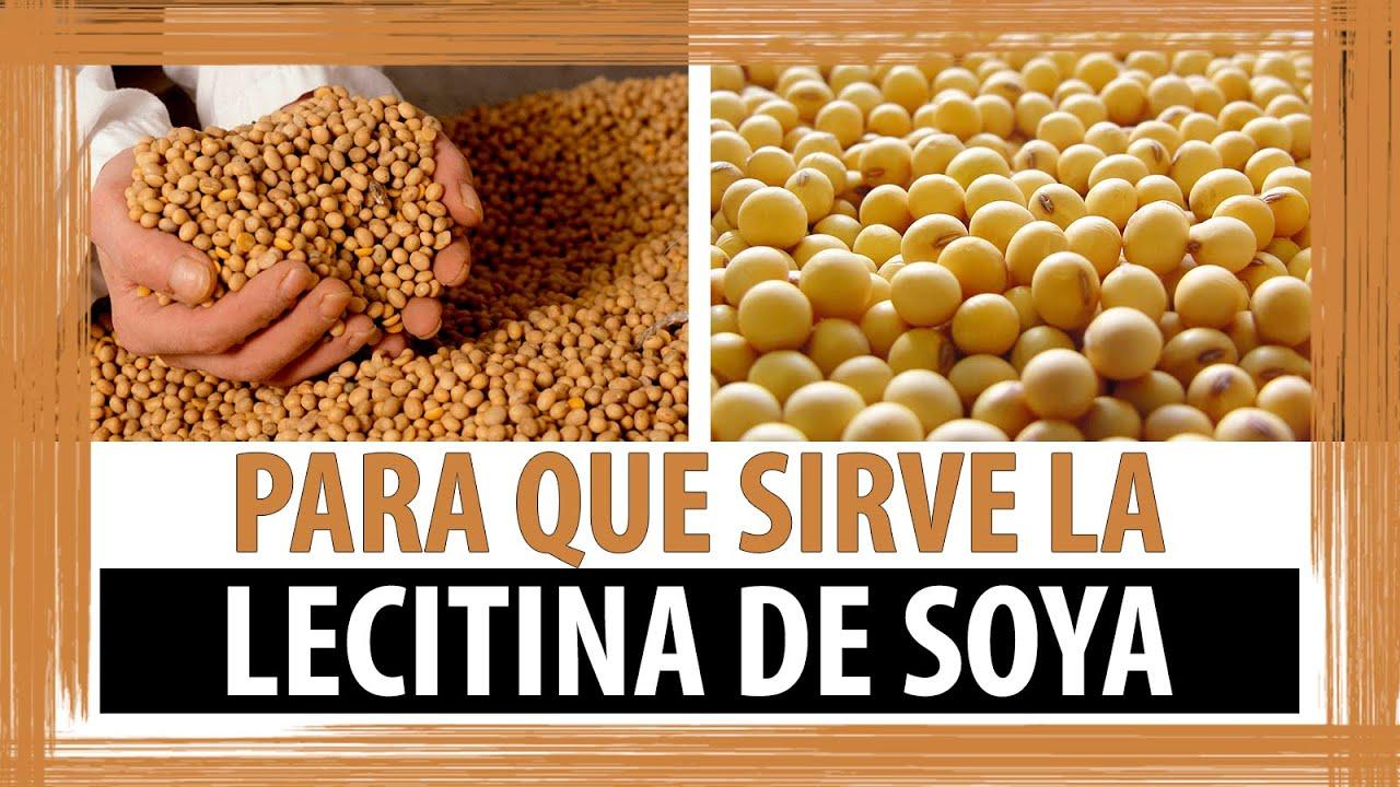 Beneficios de la lecitina de soya para bajar de peso