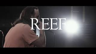 "Reef - The new album ""In Motion (Live from Hammersmith)"" - February 22nd"