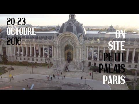 FIAC 2016 Petit Palais - secteur ON SITE
