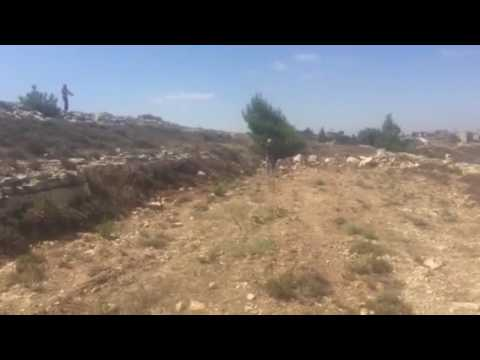 Jewish colonial settlers attacking farmers in their land