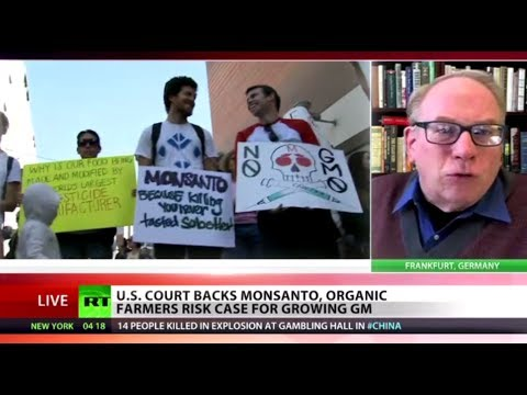 'Monsanto Mafia': US court backs GMO giant on seed patents against farmers