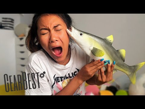 JUMBO FISH SQUISHY?! AMAZING GEAR BEST SQUISHY PACKAGE EVER!!