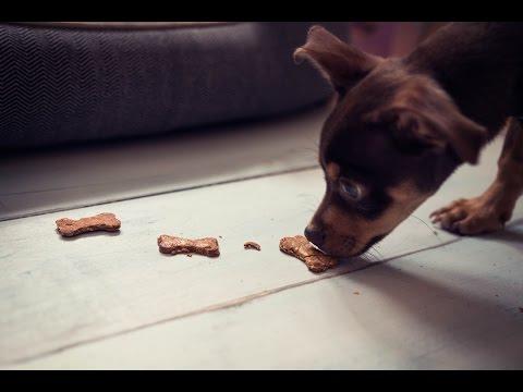 DIY Peanut Butter & Banana Dog Treats