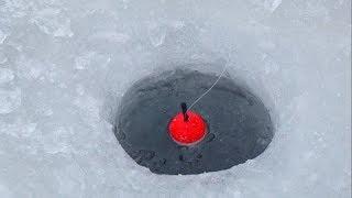 Зимняя рыбалка!Мороз -30!Хариус.Ленок.Оторвал мормышку.