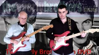 Bye Bye Love - The Everly Brothers - Instrumental cover by Steve Reynolds and Dave Monk