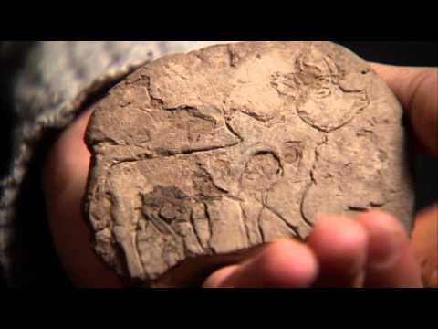 Treasures of the UCLA Library: Cuneiform Tablets (Part 3 of 5)