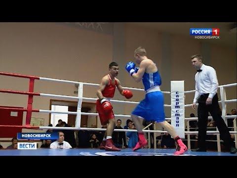 Чемпионат области по боксу завершился в Новосибирске
