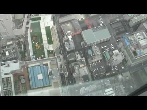 Abeno Harukas Osaka view from the top (300m), Japan