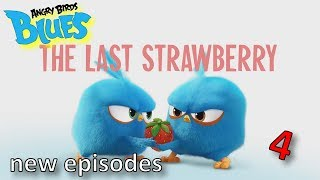 Angry Birds Blues | All Episodes Mashup - Special Compilation#4...