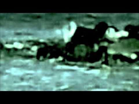 Bryan Ferry -  Song To The Siren - [Johnson Somerset and John Monkman remix]