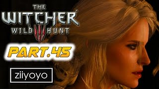 The witcher 3 wild hunt Gameplay Walkthrough Part 45 [1080p HD 60FPS PC ULTRA] - No Commentary