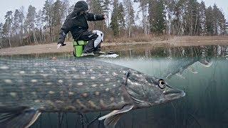 КРУПНАЯ РЫБА УТАЩИЛА УДОЧКУ!!! Рыбалка на Жерлицы и Жор Щуки