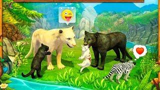 ДИКАЯ КОШЕЧКА ПУМА Симулятор Дикой Кошки #1 Красочный Игровой Мультик Для Детей