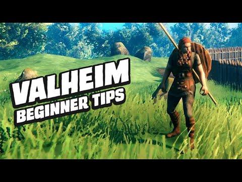 The Valheim Viking Guide For Beginners