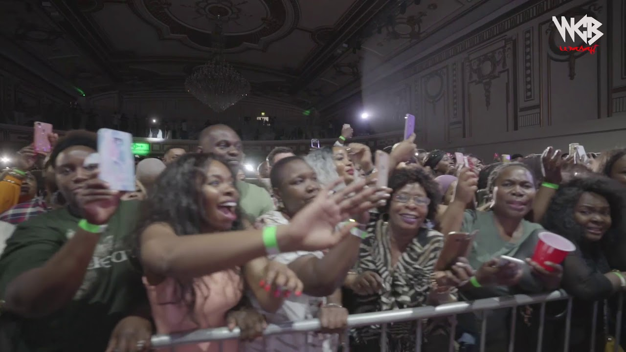 diamond Platinumz - Live  performance at summerfiesta (London)