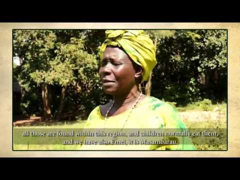 Fruit Trees Africa: Why are fruit trees important to children's health?