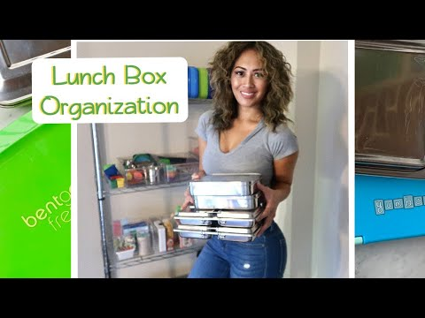 LUNCH BOX ORGANIZATION + REVIEWS