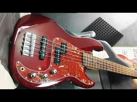 HARLEY BENTON PJ-5 HTR 5 string bass ( FULL REVIEW )
