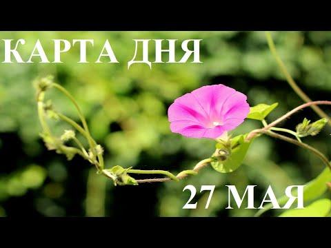 КАРТА ДНЯ 27 МАЯ ТАРО ГОРОСКОП ОТ ЛИС ФИЗАЛИС