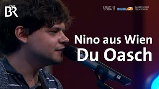Der Nino aus Wien LIVE - Du Oasch | Heimatsound-Festival 2014 | BR