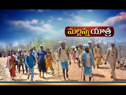 Thousands of Pilgrims on Foot Converge | at Srisailam Temple