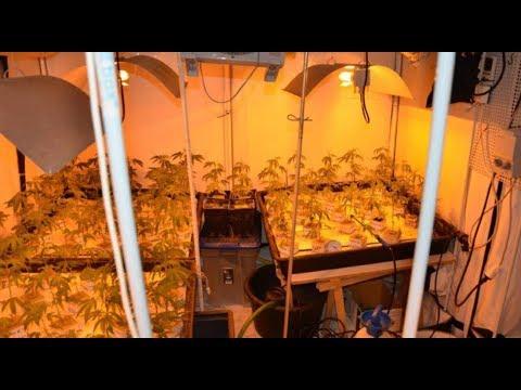 Drogen und Kriminalität HD DOKU