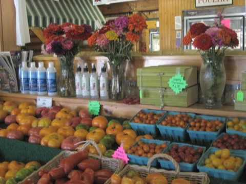 SUMMER PART 2 - New York State Agritourism Summer W