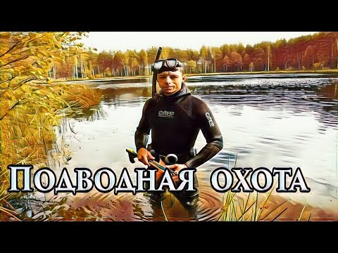 Подводная охота. Озеро Глубокое. Август. Щука.