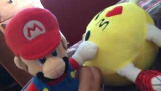 Mario. Made a stuped movi